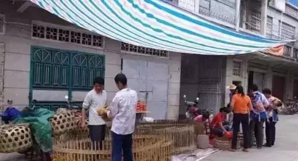 化州各乡镇明朝的人口_化州糖水图片