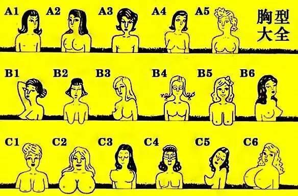 你知道你的胸部像什么吗?=>鼠标右键点击图片另存为