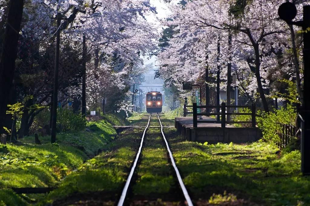 走过了仙台大阪,别忘了鲁迅动漫的东北东京坏笔下包坏图片动态大全表情的图片