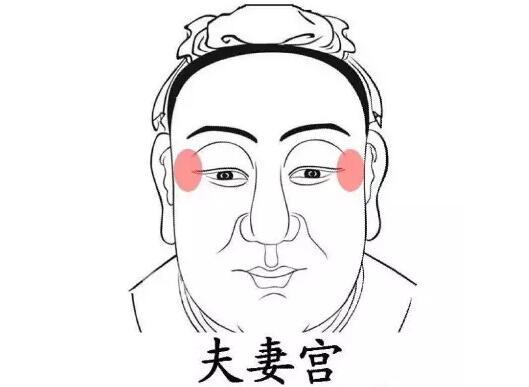 手绘女性侧脸微信头像