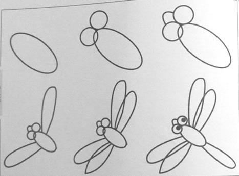 蜻蜓 图片