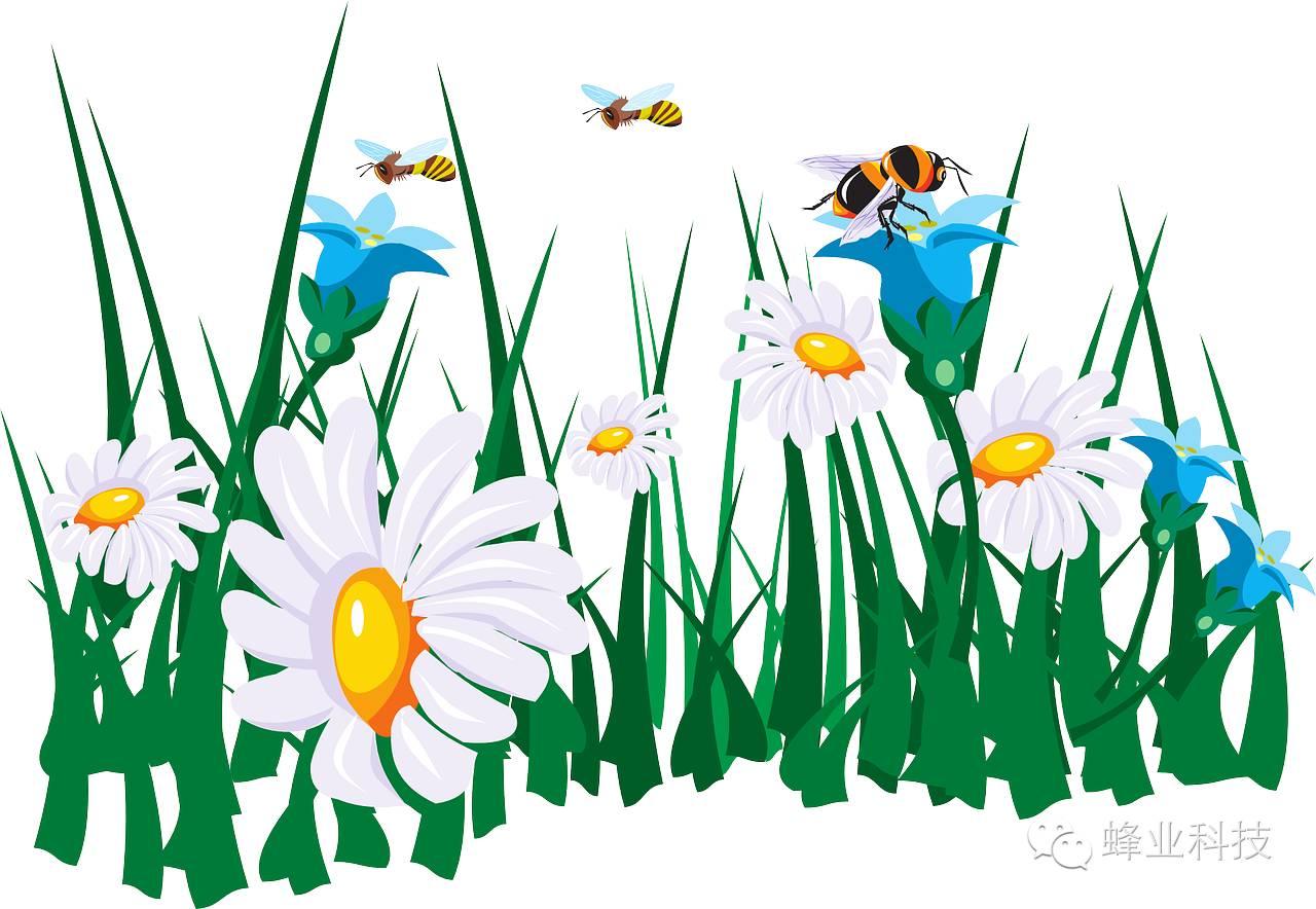 简单小手工制作方法蜜蜂步骤