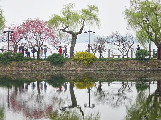 蠡园,水软风细的温柔之乡