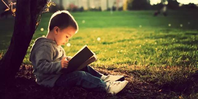 为什么你家孩子不爱读书??因为你错过了这两个关键阶段 - 特中特 - 特中特教育指导中心