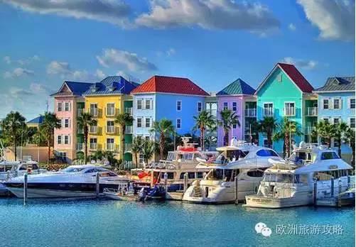 猪岛、性感迷宫、沙滩继母,那个叫巴哈马的天的酒店粉色图片