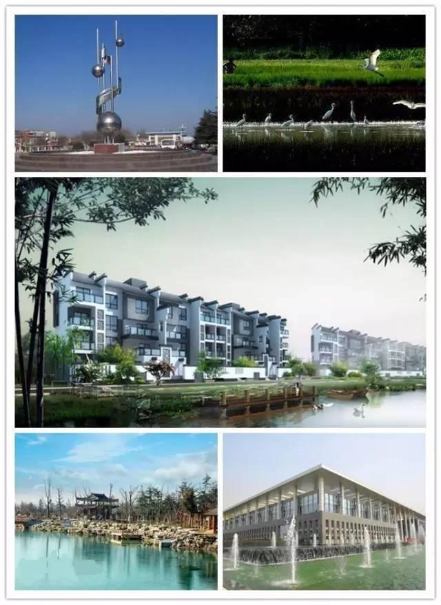 gdp增速_2015上海各区县gdp