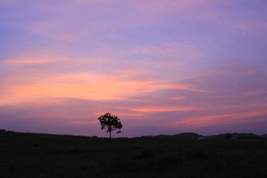 木兰草原,风光无限,岁月在这里沉醉