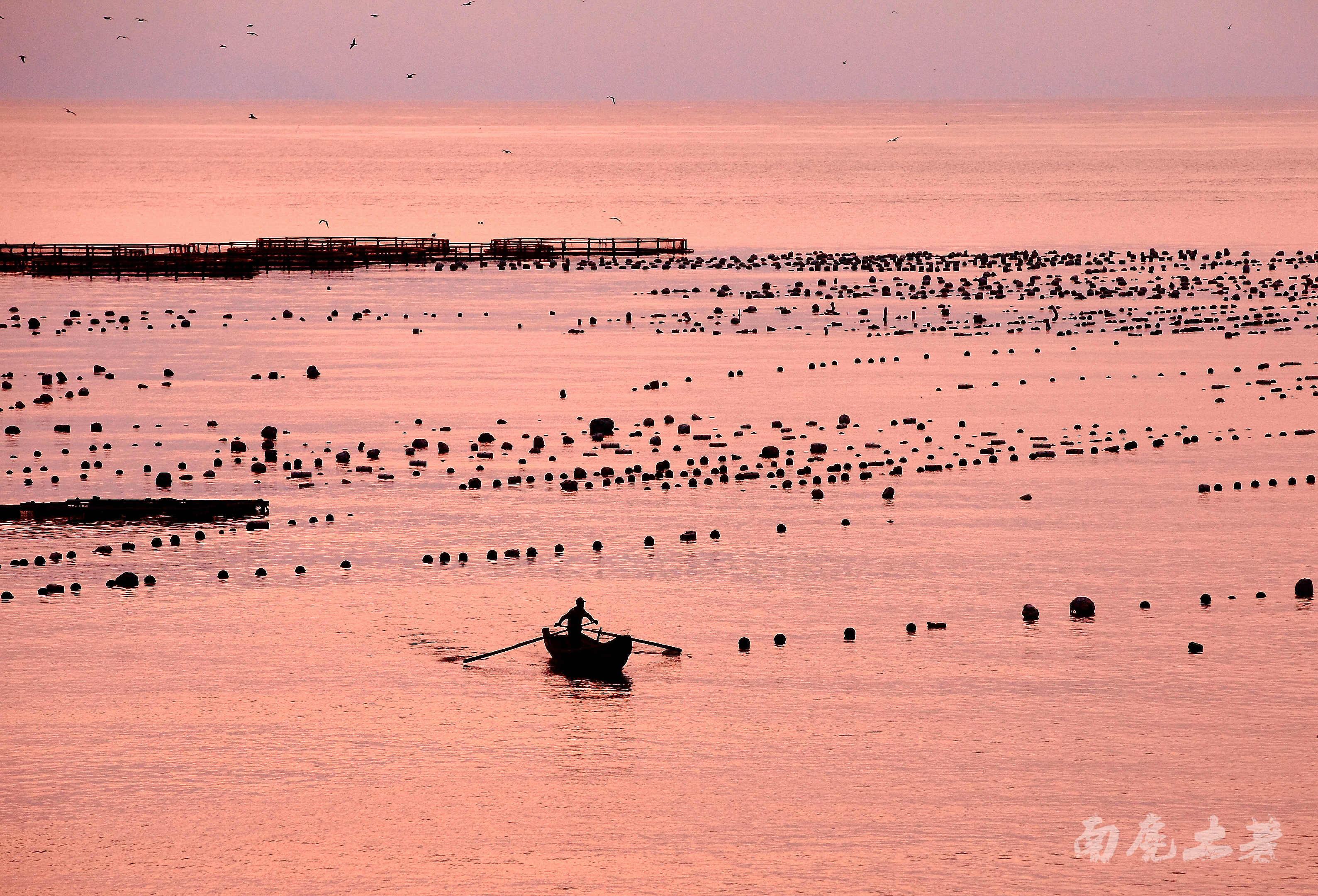 约吗?南麂渔港的夕阳下