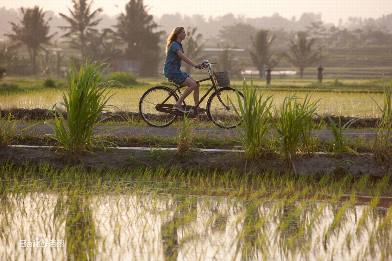 关于蜜月胜地巴厘岛,你需要知道的那些事儿