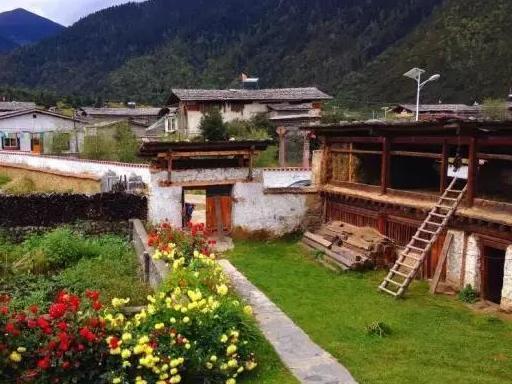 """西藏景色里,鲁朗有张""""网红""""的脸"""