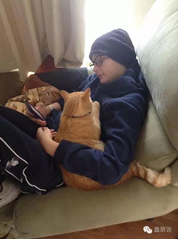 流浪猫因为感恩,一直陪伴在身患血癌小男孩身边-蠢萌说
