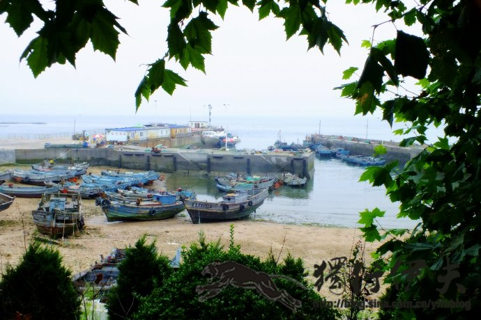 去原生态的竹岔岛吃海鲜