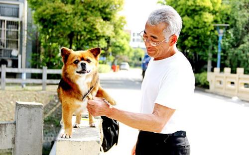 狗把人口交_把狗狗交给朋友养后,终于明白什么是塑料情了