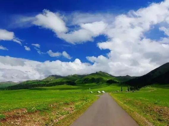 一旦去了新疆,其他的地方就成了将就