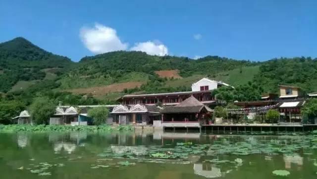 旅游 正文  景区广西西林京桂古道茶业有限公司茶园,获全国有机农业图片