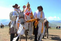 马背上的好儿郎,藏族的小英雄