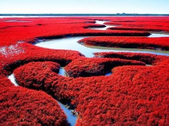 辽宁竟私藏了一片颜值超高的红海滩,美到窒息!