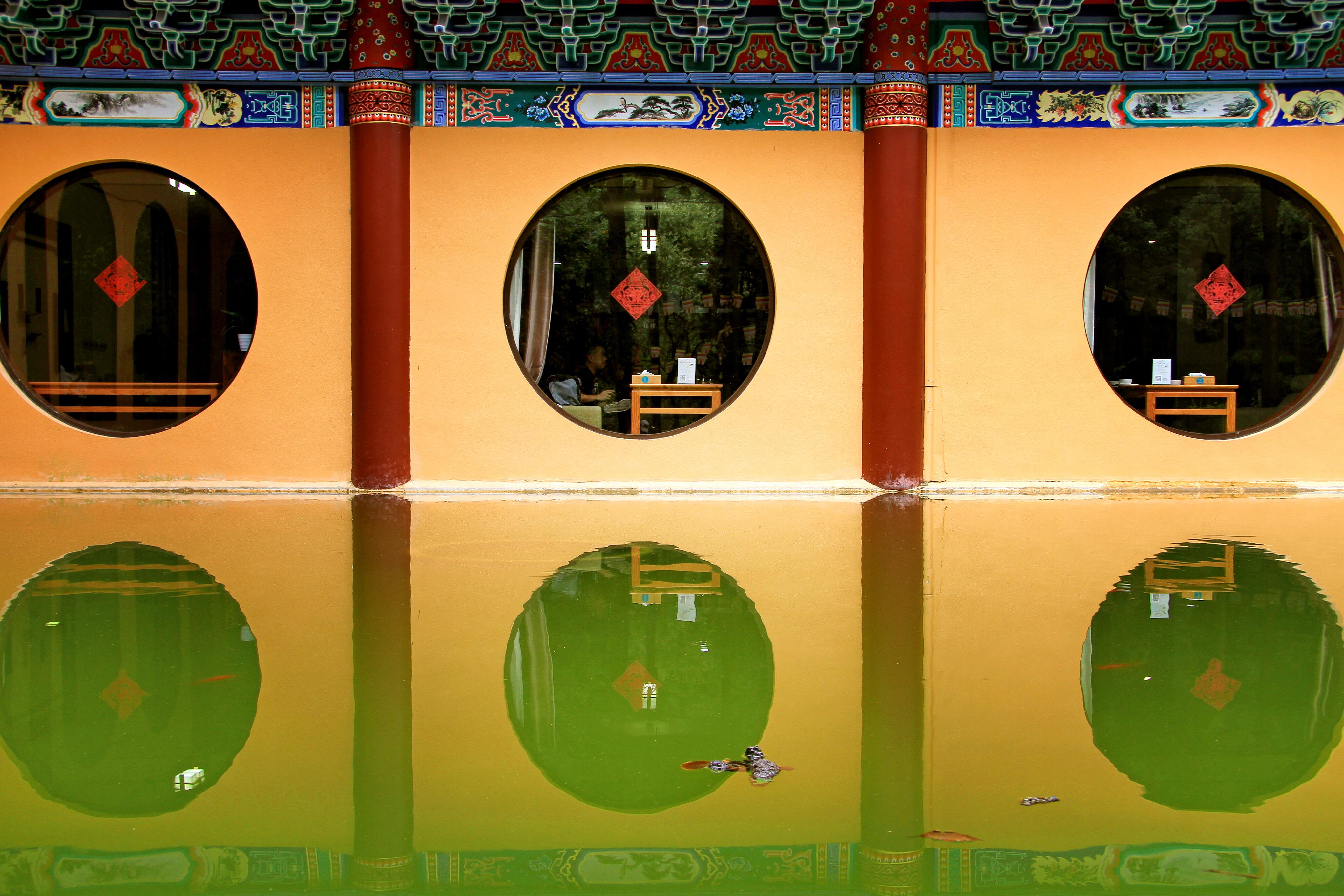 平行江湖带你探幽天目山深林之旅