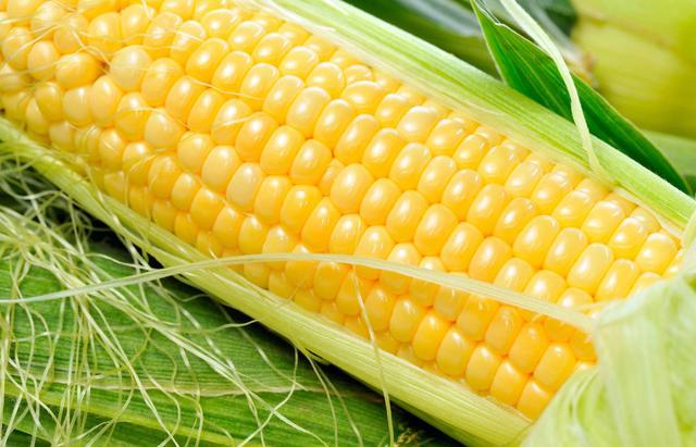 玉米的营养功效多多