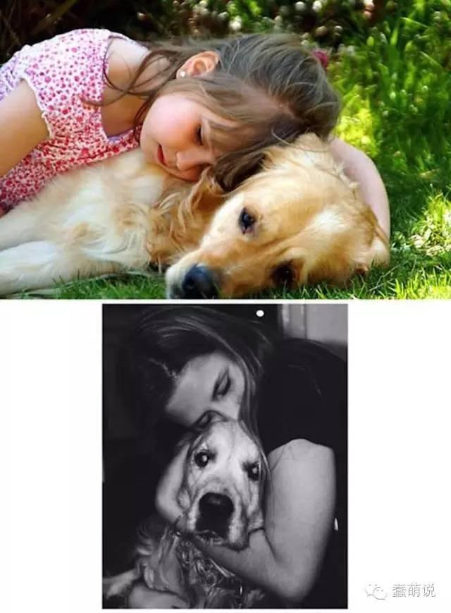 幼年VS老年,那些让人懂得珍惜自己宠物的对比照片-蠢萌说