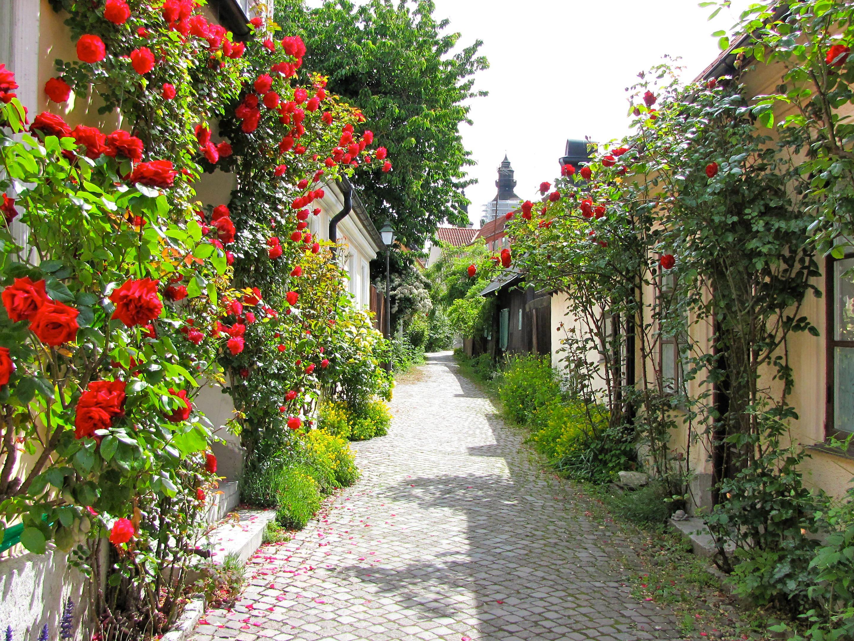 闷骚的瑞典人,私藏的9个最美小镇