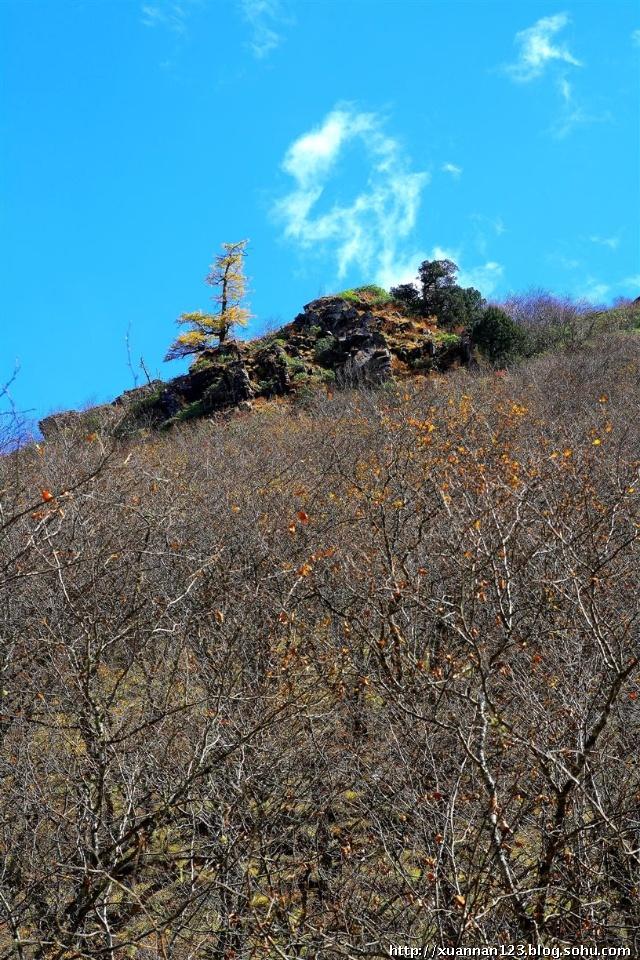 阿毛的丝绸之路――第八站 黄龙