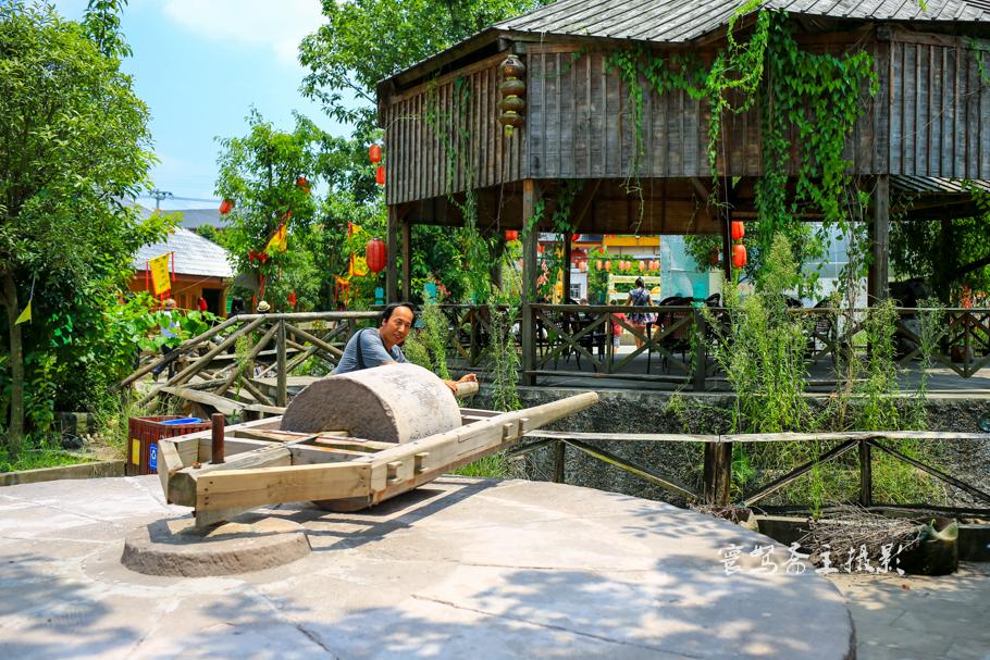 【山水重庆】在合川体验方兴未艾的农业生态旅游