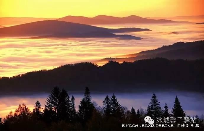 有一种秋色叫伊春的五花山。附伊春秋季旅游