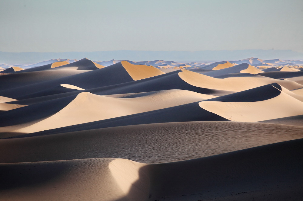 额济纳 想约你去看沙漠