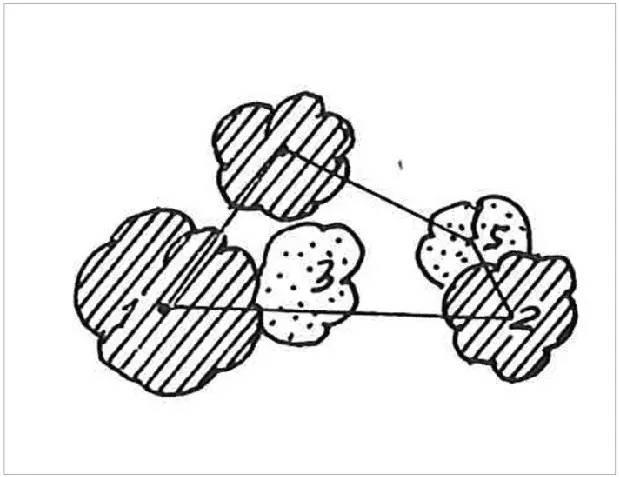 花镜植物配置平面图手绘