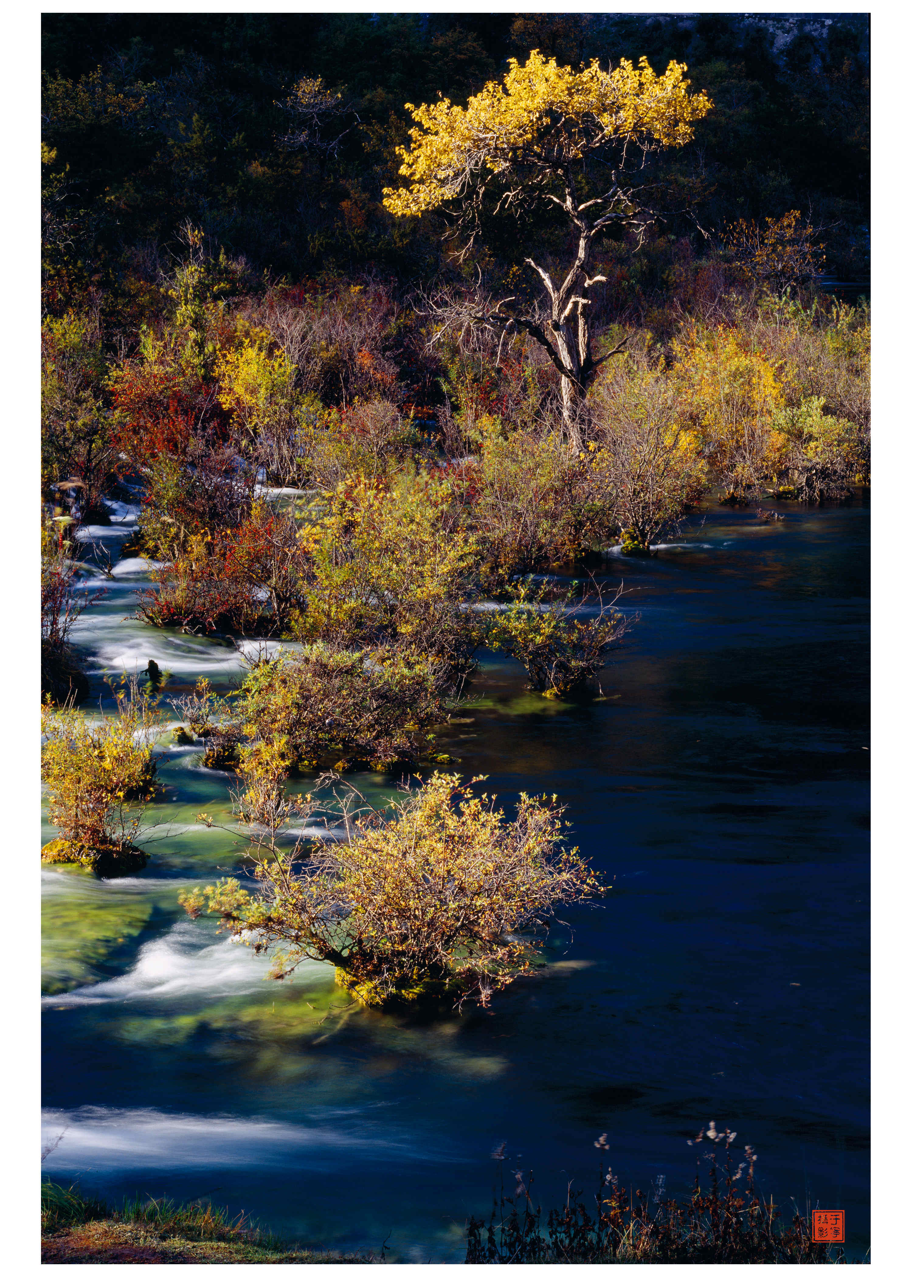 秋天,如果梵高和塞尚来川西写生