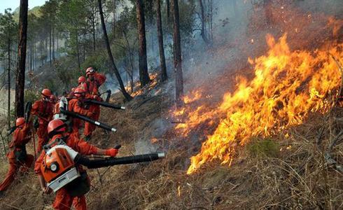 巢湖岸边起火 烧掉近千平米草地