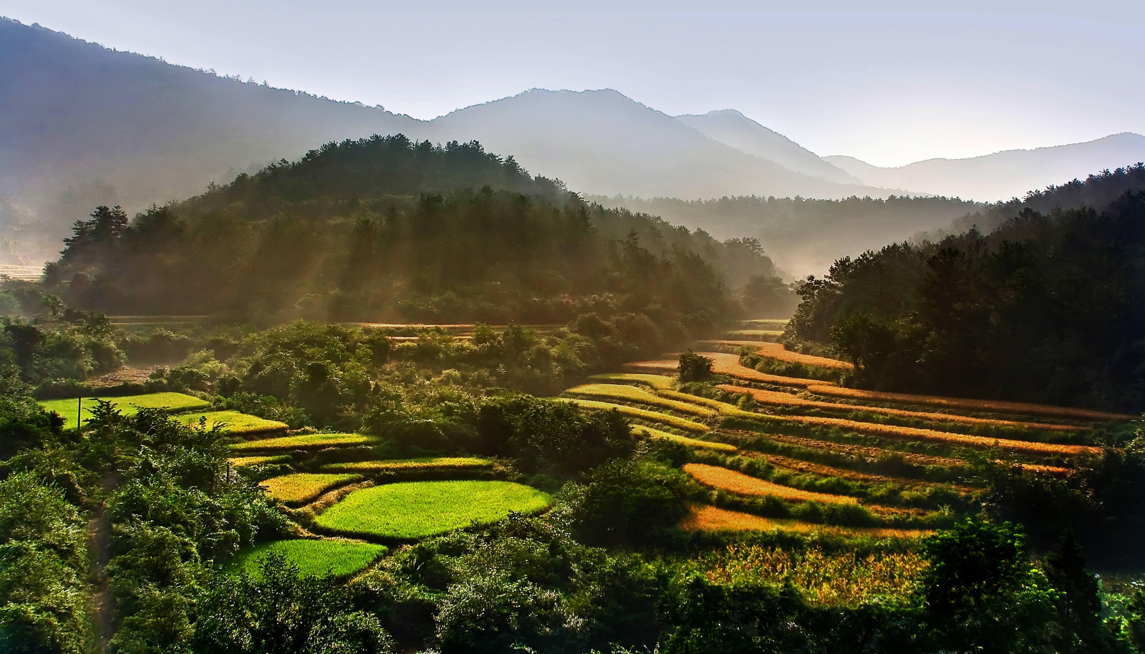 重庆长寿区有多少人口_重庆长寿区
