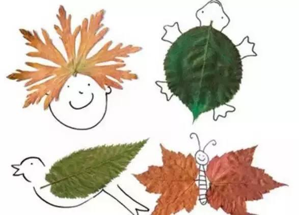 7 捡飘落的叶子
