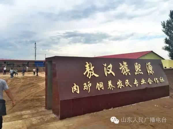 敖汉旗贝子府镇-关注驴产业之 敖汉养殖模式图片