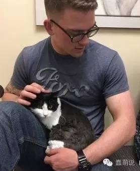 当被遗弃的流浪猫遇上好心人后,一切都变得温暖多了-蠢萌说