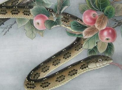属蛇的几月出生最好