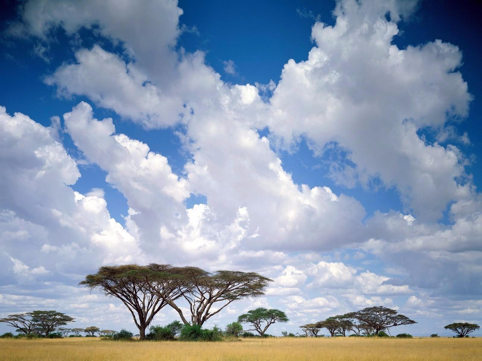 解码非洲 | 多哥