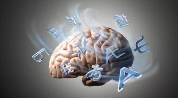 如何科学的对孩子进行全脑开发教育?