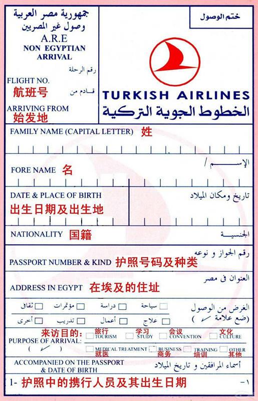 30国出入境卡终极填写指南