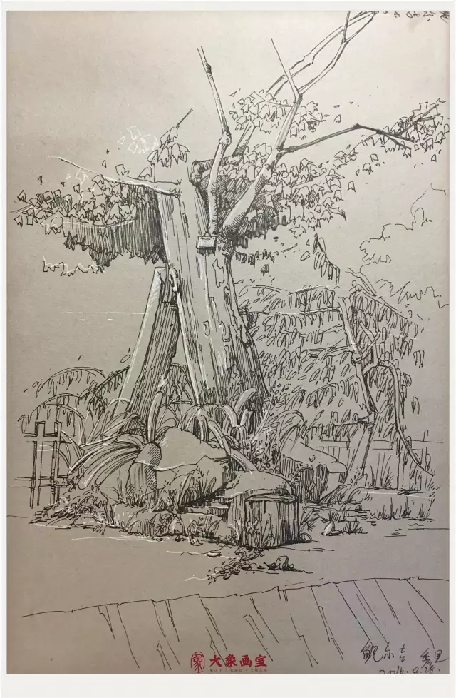 大象速写手绘