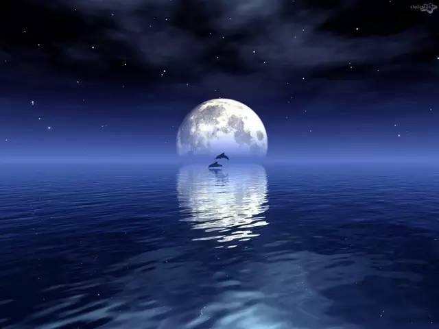 映照的模样,如此迷人光芒,好比温柔乡,偏爱水中月亮倾诉衷肠