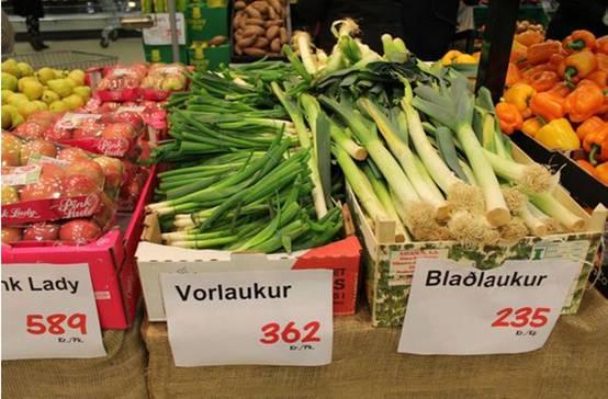 冰岛v攻略攻略攻略水晶保卫50萝卜2图片