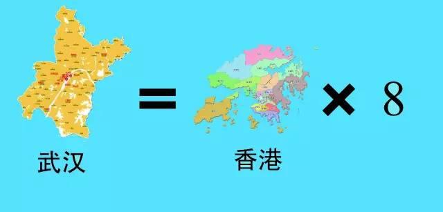 对不起,武汉,向全中国道歉! - 九头鸟 - ...欢迎四方博客...