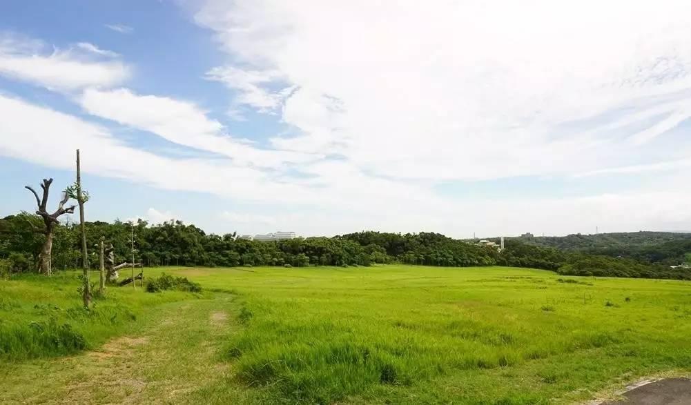 新竹青青草原 北台湾最长溜滑梯就在这