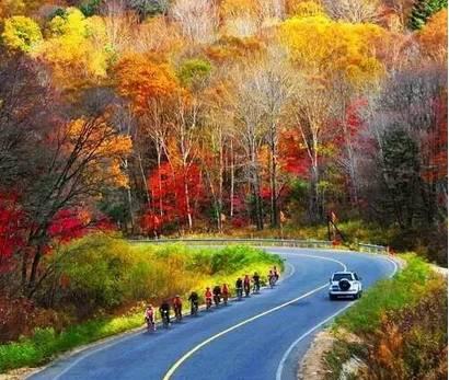 醉人中国最美秋天的高铁线,每一站都是开往洋葱头是什么茎风图片