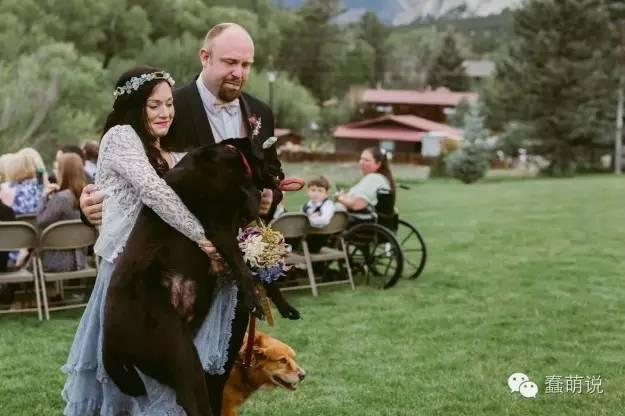 汪星人:即使我又老又有癌症,也要参加你的婚礼!-蠢萌说