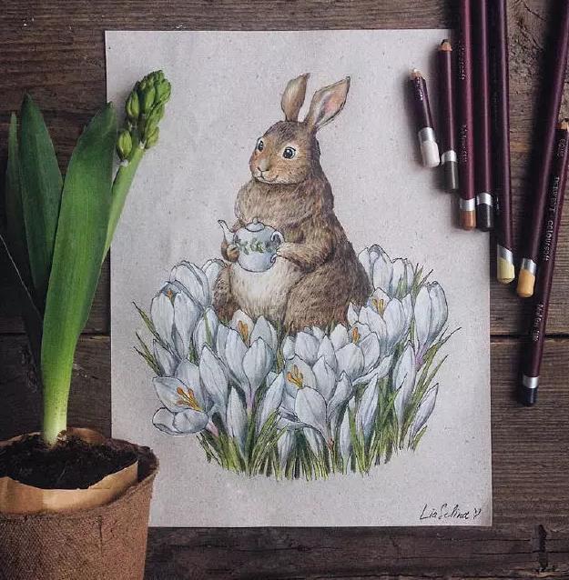 彩铅笔下的手绘插画,漂亮极了