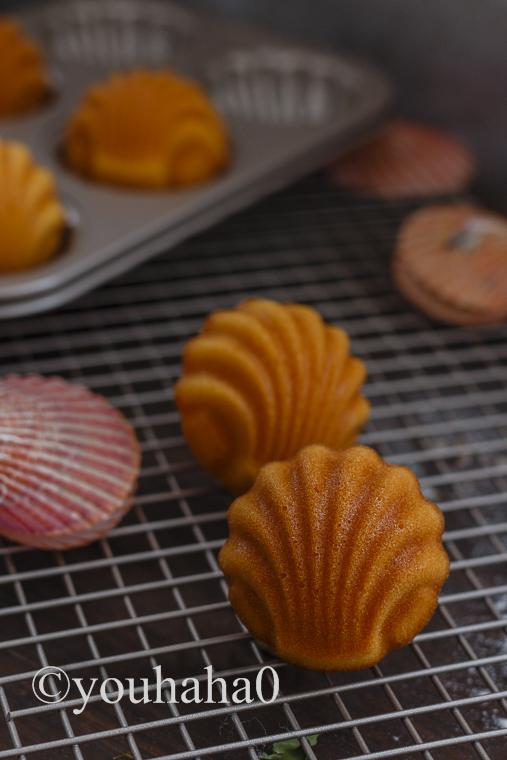 美味烘焙推荐美貌与性感、美味与肚子并存的经典玛德琳蛋糕 - 云淡风清 - 随心z.y的博客