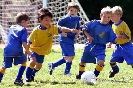 我们发现学足球的小朋友爸爸陪伴 女孩也适合踢足球吗   踢足球有利